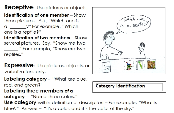 Categories Word Lists Activities Worksheets And More