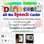 tpt-diff-speech-cards-preview-png